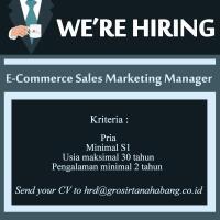 lowongan-kerja-untuk-posisi-sales-and-marketing-manager-e-commerce-dan-spg-urgent