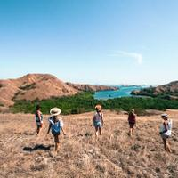 what-to-do-and-where-to-dive-in-komodo