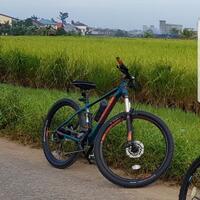 polygon-xtrada-bike-park