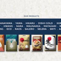 dicari-reseller-dan-agen-penjualan-beras-premium-japonica