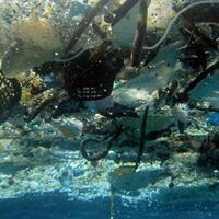 bule-ini-unggah-penampakan-laut-bali-penuh-sampah-warganet-ngenes
