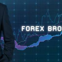 3-broker-forex-terbaik---paling-direkondasikan