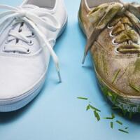 cara-mencuci-sepatu-biar-nggak-cepat-rusak-begini-langkahnya-gan-sis