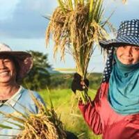 petani-adalah-kita