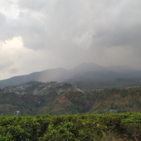 catatan-perjalanan-solo-hiking-gunung-lawu-via-cetho-9-10-november-2019