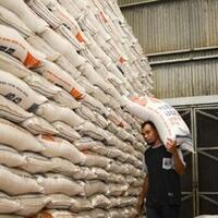 beras--rusak--bulog-laku-rp238-miliar