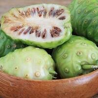 sering-diremehkan-ternyata-buah-mengkudu-punya-segudang-khasiat-baik-bagi-tubuh