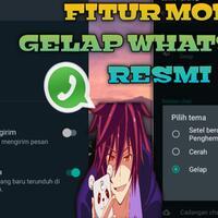 resmi-dark-mode-whatsapp-akhirnya-rilis
