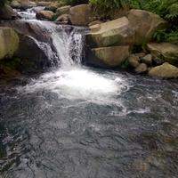 sungai-jernih-di-cibodas---cianjur