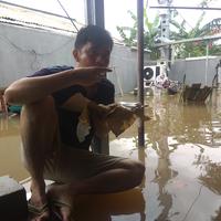 boleh-banjir-tapi-tetap-santuy