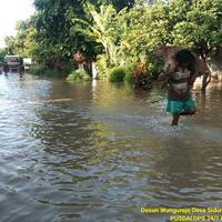 sejumlah-desa-di-lumajang-banjir-warga-berusaha-selamatkan-hewan-ternak