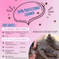 jasa-cat-grooming-home-service-jakarta---central-cat-grooming