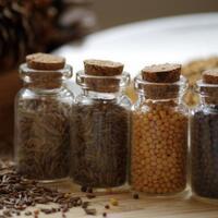 mengenal-khasiat-habbatussauda-obat-herbal-penyembuh-segala-penyakit