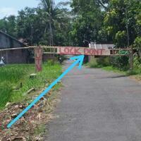 lockdown-di-indonesia-bukan-solusi-karena-akibatnya-bisa-jadi-revolusi
