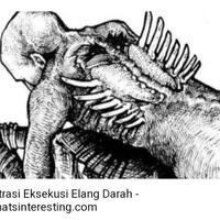 adalah-siksa-yang-paling-kejam-dari-viking