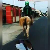 bak-pangeran-berkuda-putih-uniknya-rider-ojol-satu-ini-menggunakan-kuda-bukan-motor