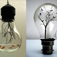 kreatifitas-muncul-dari