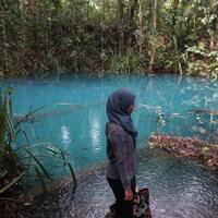 membelah-hutan-demi-temukan-telaga-biru-mistis-hunian-buaya-putih