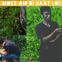 moss-aquascape-nature