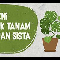 sampah-untuk-merawat-tanaman