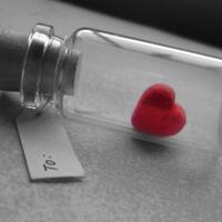 cinta-dalam-diam