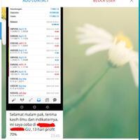 online-27maret21--pelatihan-forex-system-dan-trading-emas-atas-request-kaskuser