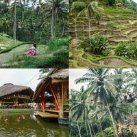coc-reg-bali-5-desa-paling-mempesona-di-bali-jadi-ingin-tinggal-disana