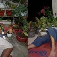 viral-para-suami-rela-tidur-di-teras-rumah-demi-menjaga-tanaman-hias-istrinya