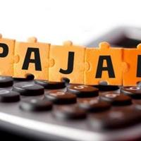 integrasikan-data-djp-bakir-pasaman-pupuk-indonesia-patuh-pajak