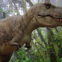 gak-nyangka-t-rex-ternyata-punya-hubungan-dekat-dengan-hewan-yang-sering-kita-makan