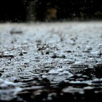 hujan-punya-bau-khas-ternyata-ini-penyebabnya