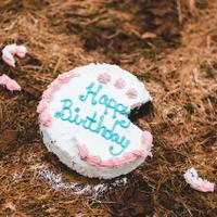 ide-alternatif-kue-ulang-tahun-selain-tart