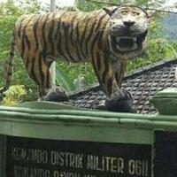 harimau-jawa-masih-belum-mau--mengaum-sebuah-konflik-di-masa-lalu