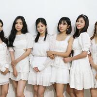 apink-siap-rilis-lagu-untuk-fans