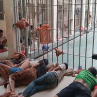 hanya-di-indonesia-mengungkap-kejahatan-bisa-tidur-di-penjara