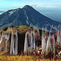 cerita-pengalaman-pribadi-pendakian-ke-gunung-lawu-yang-kental-akan-mistisnya