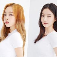 agensi-kenalkan-2-member-baru-cignature-halo-dohee-dan-chloe