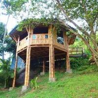 3-model-rumah-bambu-yang-membuat-tempat-tinggal-jadi-lebih-nyaman