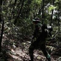 kisah-mistis-prajurit-tni-di-hutan-papua