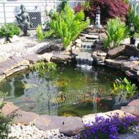 3-desain-kolam-ikan-batu-alam-sederhana-dengan-kolaborasi-unik-dan-bikin-adem