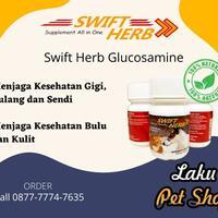terhebat-callwa-0877-7774-7635-vitamin-kucingdewasa-vitamin-kucing-dan-anjing