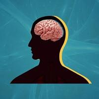 perbandingan-ukurang-otak-manusia-dengan-mamalia-lainnya