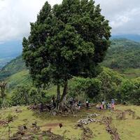 situs-gunung-padang-cianjur--situs-prasejarah-megalitikum