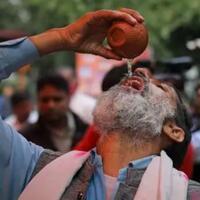 warga-india-minum-air-kencing-sapi-untuk-tangkal-virus-corona-gokil-apa-konyol-nih