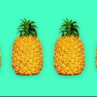 nanas-dari-buahnya-para-bangsawan-sampai-menjadi-simbol-keramahan