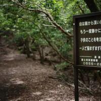 jarang-diliput-media-7-fakta-tentang-hutan-bunuh-diri-di-jepang-auto-merinding-gan