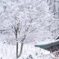 daebak-beginilah-meriahnya-musim-dingin-di-korea-selatan