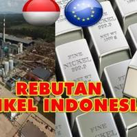 uni-eropa-pusing-sampai-gugat-indonesia-soal-larangan-ekspor-nikel-ke-wto
