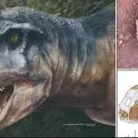 penemuan-fosil-dinosaurus-spesies-baru-quotllukalkanquot-ditemukan-di-argentina