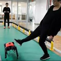 tech-wars-asu-alphadog-siap-menantang-spot-buatan-boston-dynamics